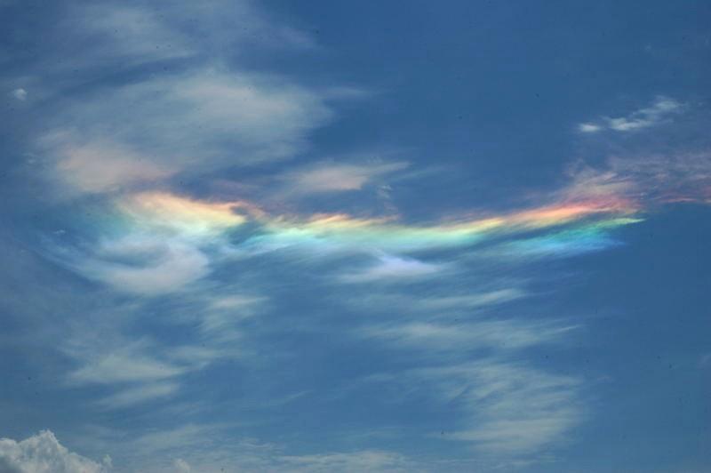 彩雲 (航空機)の画像 p1_28